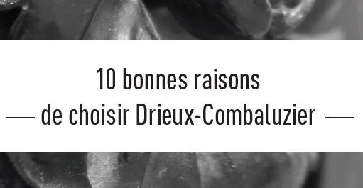 10 Bonnes raisons de choisir Drieux-Combaluzier